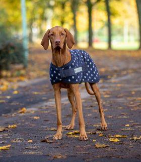 Hunde-Fleecedecke Pünktchen