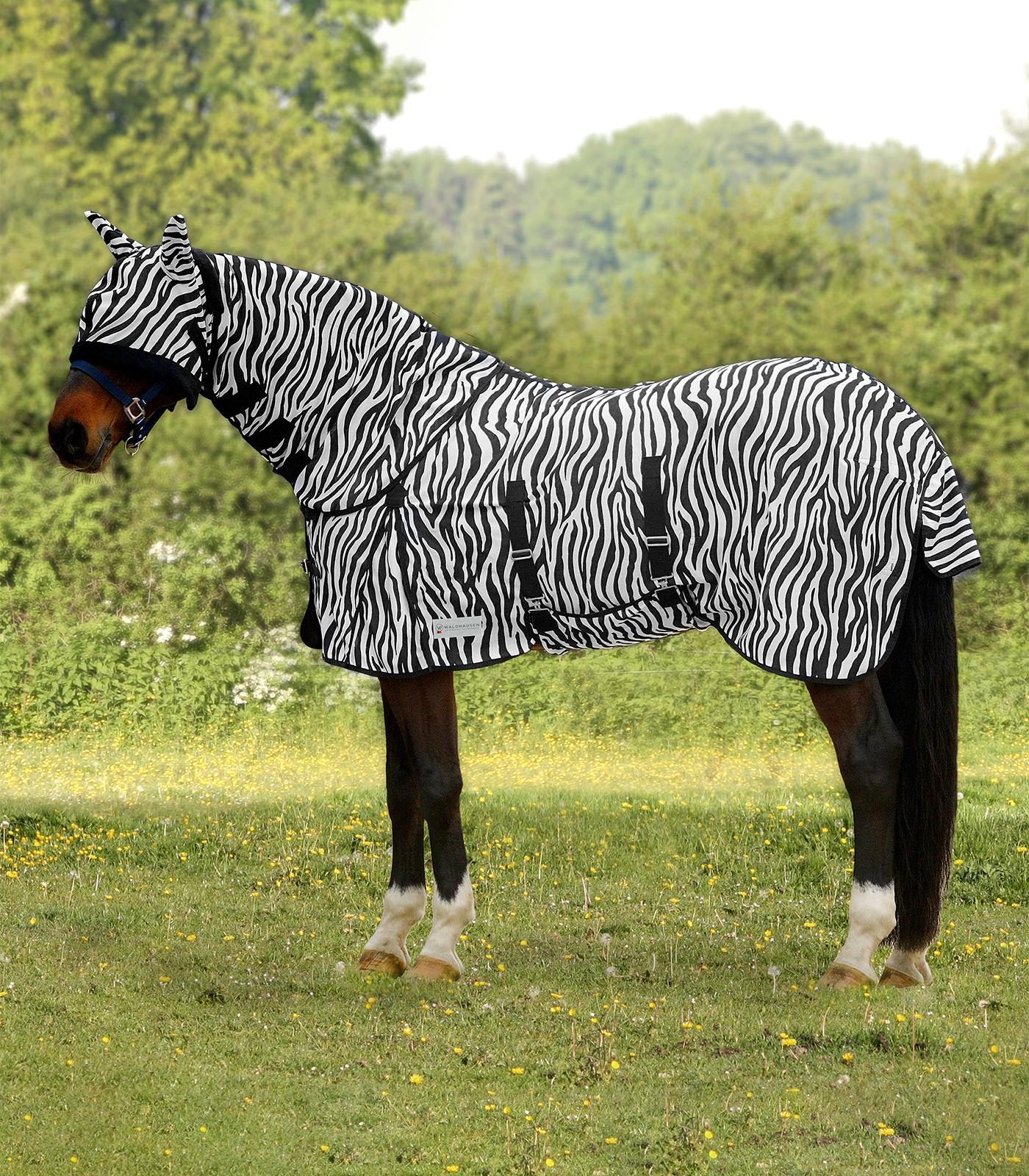 Zebra Fly Rug