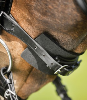 Pad for Bridles