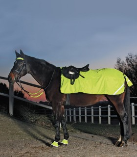 REFLEX Exercise Sheet, Fleece