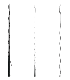 Telescope Lunge Whip