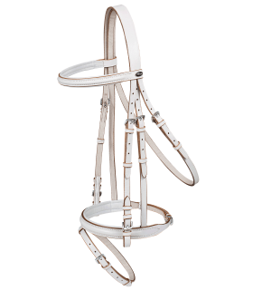 Vaulting Bridle