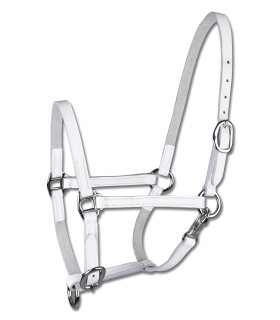 STAR foal show halter, leather