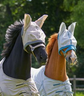 PROTECT fly mask