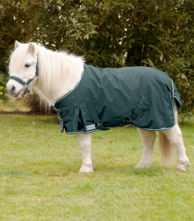 Rain Blanket for Shetty