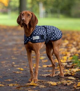 Dot Dog Coat, light