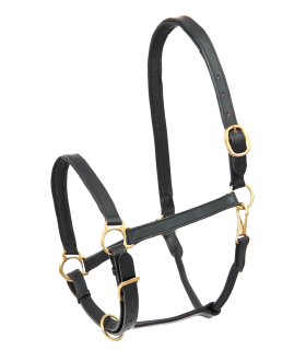 STAR Leather Halter Robust