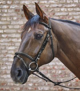 STAR Bridle Basic