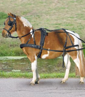 STAR Synthetic Breastplate Single Harness, Pony and Shetty