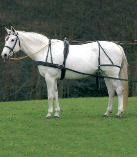 Arreos sintéticos para un caballo Economic, VB y WB